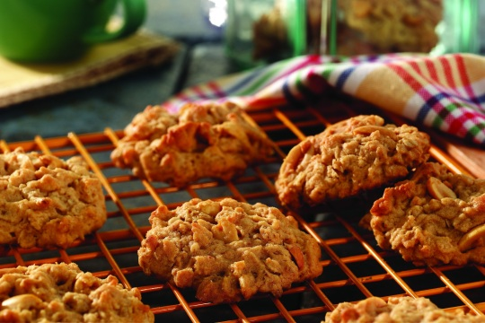 2851_mw_peanut_butter_oatmeal_cookies_high